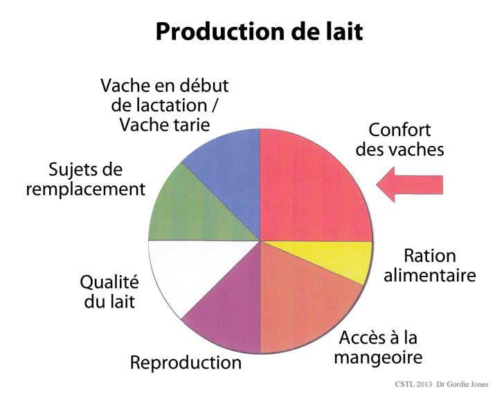 Ratio - Production de lait